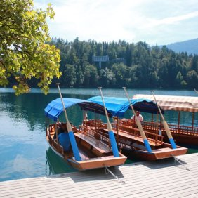 boats in bled
